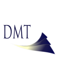 DMT Software Services LLC